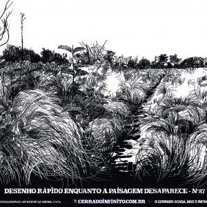 Desenhos de várias situações de natureza pela cidade, com algumas plantas de Cerrado, Por Daniel Caballero.