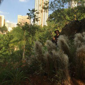 Daniel Caballero em meio as plantas do Cerrado Infinito, na Praça da Nascente Homero Silva.